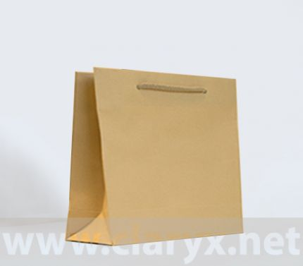 Brown Kraft Paper Bag 24+9х23
