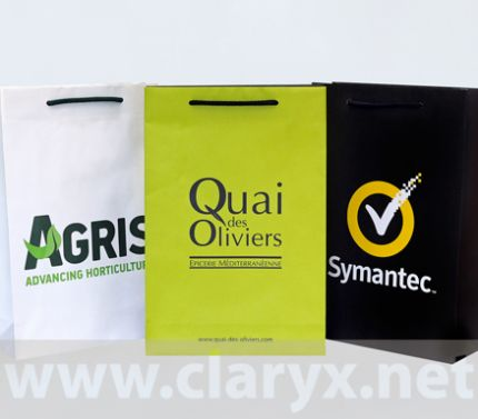 promotional paper bags
