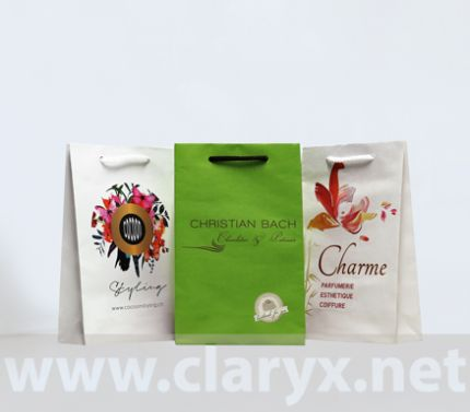 eco friendly gifr bags